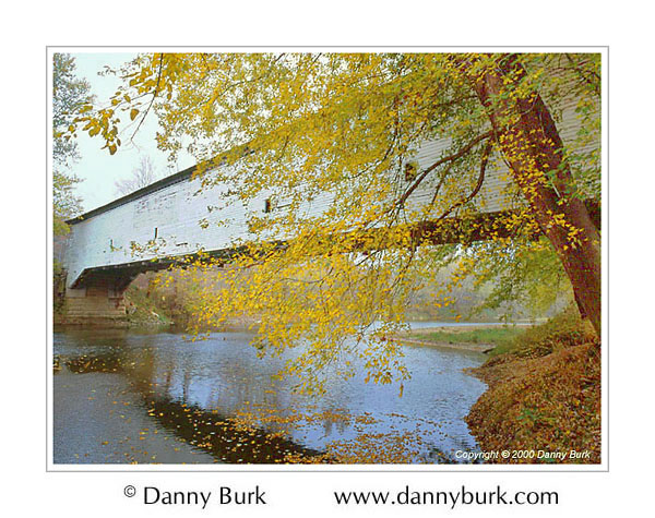 Picture: Fall color at Jackson Covered Bridge, Parke County, Indiana