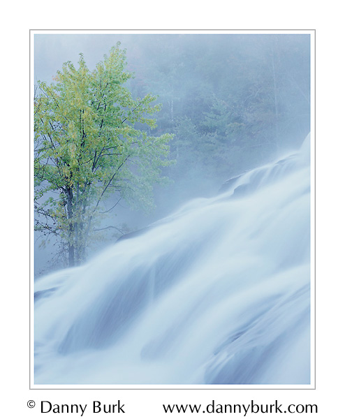 Picture: Dawn mist, Bond Falls, Upper Peninsula, Michigan