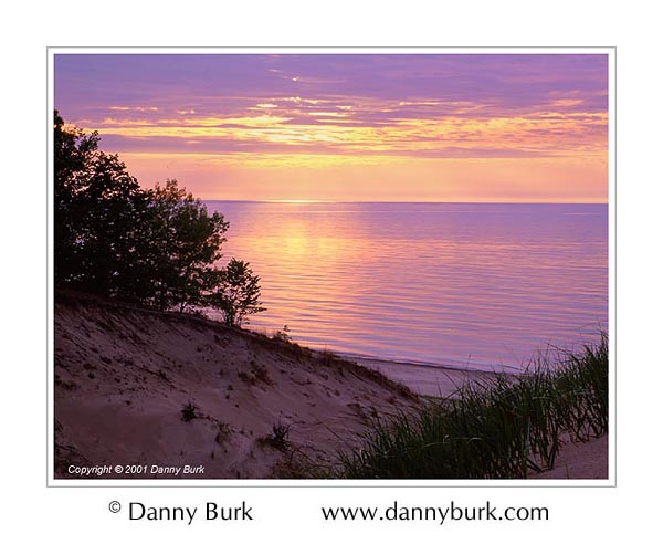 Picture: Shoreline and grasses at sunset, Indiana Dunes State Park