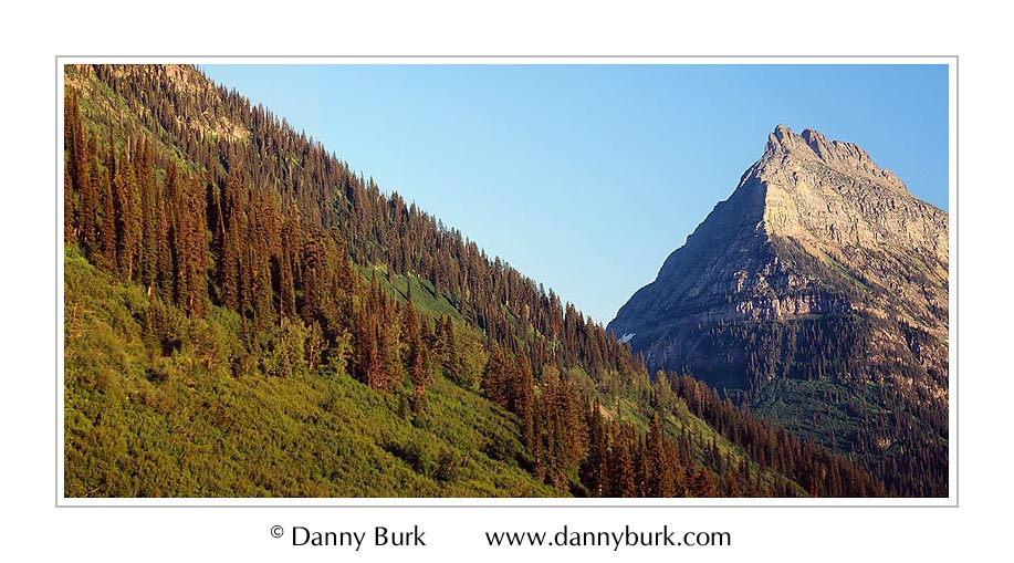 Picture: Hillside panorama along Going-to-the-Sun Road, Glacier National Park, Montana