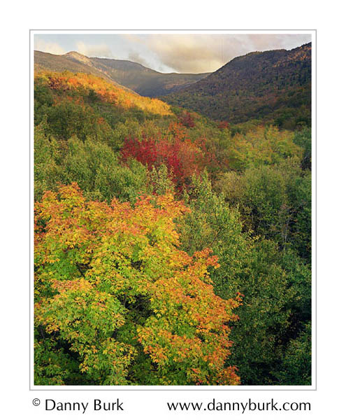 Picture: Fall color, Jefferson Notch, New Hampshire