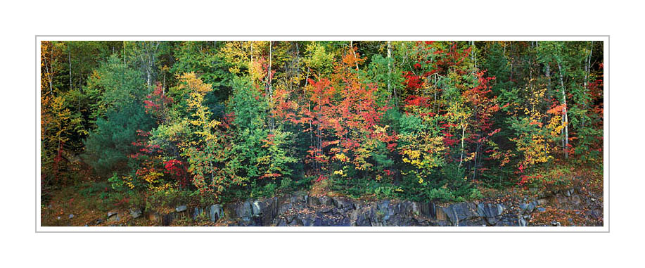 Picture: Colorful fall foliage, Kancamagus Highway, New Hampshire