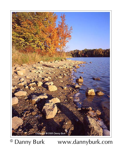 Picture: Fall Color and Shoreline, Worster Lake, Potato Creek State Park, Indiana