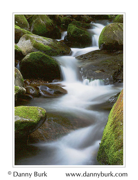 Picture: Le Conte Creek, Roaring Fork, Great Smoky Mountains National Park