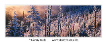 Picture: Blowing rime ice, sunset, Clingman's Dome, Great Smoky Mountains National Park, Tennessee