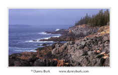 Picture: Jagged seacoast at low tide, near Otter Point, Acadia National Park, Maine