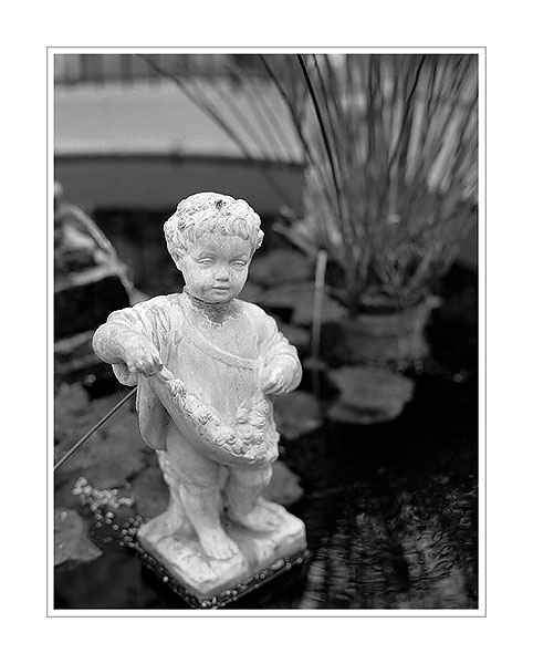 Picture: Cherub, Potawatomi Greenhouse, South Bend, Indiana