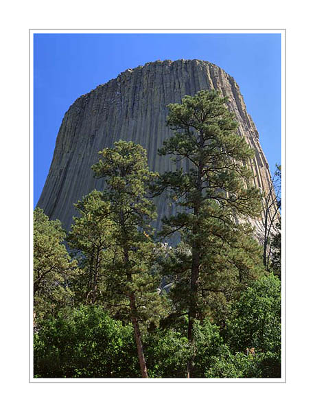 Picture: Devils Tower National Monument, Wyoming