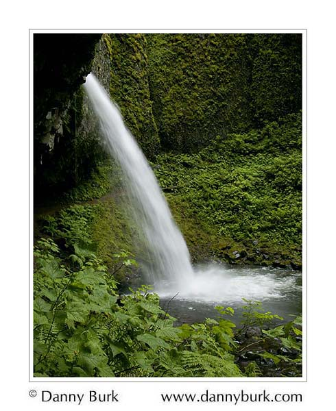 Picture: Ponytail Falls, Columbia River Gorge, Oregon