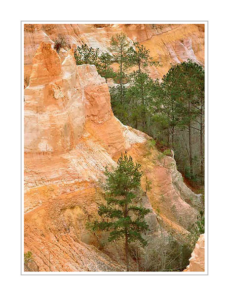 Picture: Providence Canyon State Park, Georgia