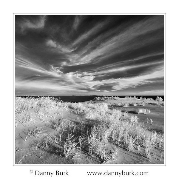 Infrared: Dunes, Sleeping Bear Dunes National Lakeshore, Michigan