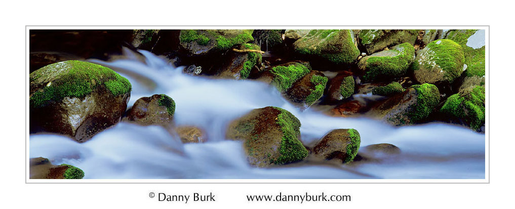 Picture: Moss-covered rocks and rushing cascade, Roaring Fork, Great Smoky Mountains National Park, Tennessee - Panorama