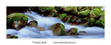 Picture: Moss-covered rocks and rushing cascade, Roaring Fork, Great Smoky Mountains National Park, Tennessee