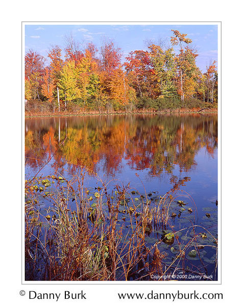 Picture: Fall color, Spicer Lake, Indiana